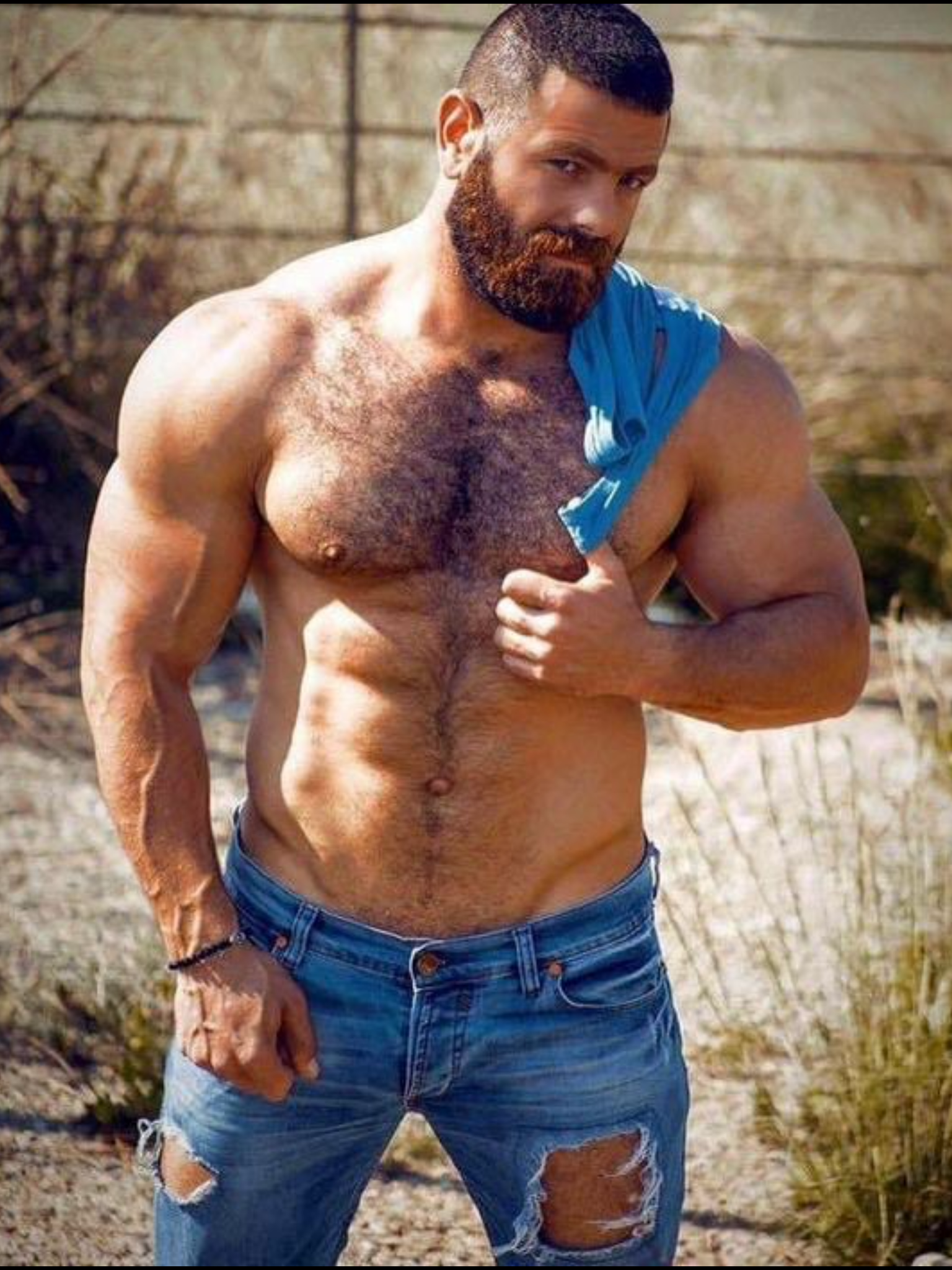 Naked hairy chested muscle men properties