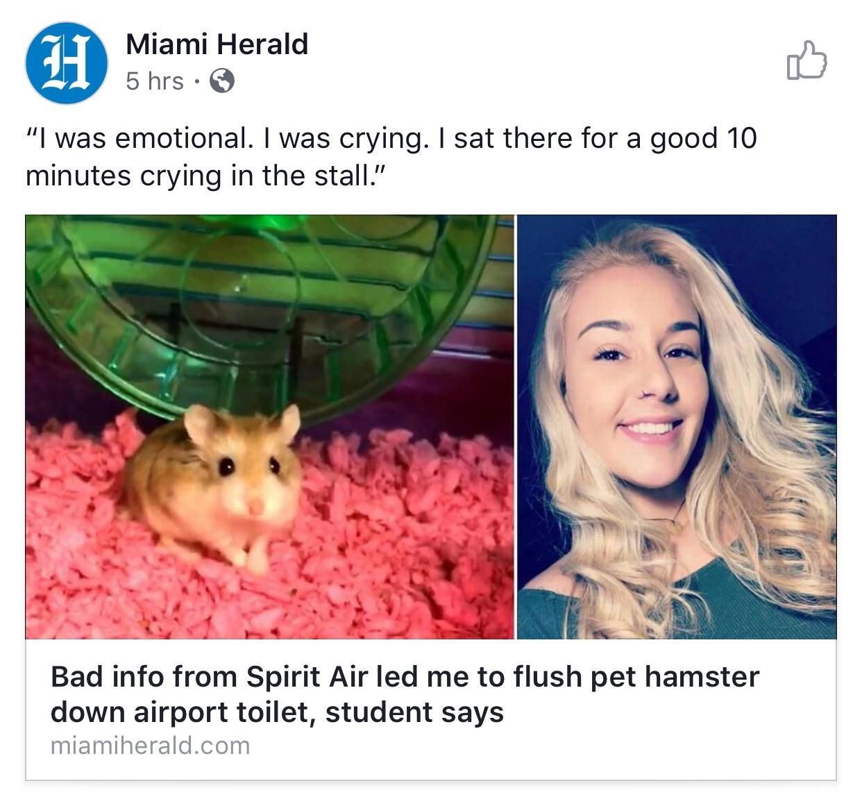 best of Lips Toilet cunt