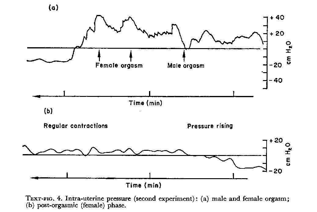 Zi-Zi reccomend Male female orgasm length