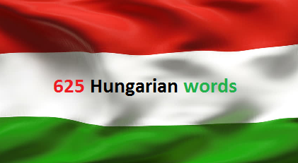 Hungarian word for asshole