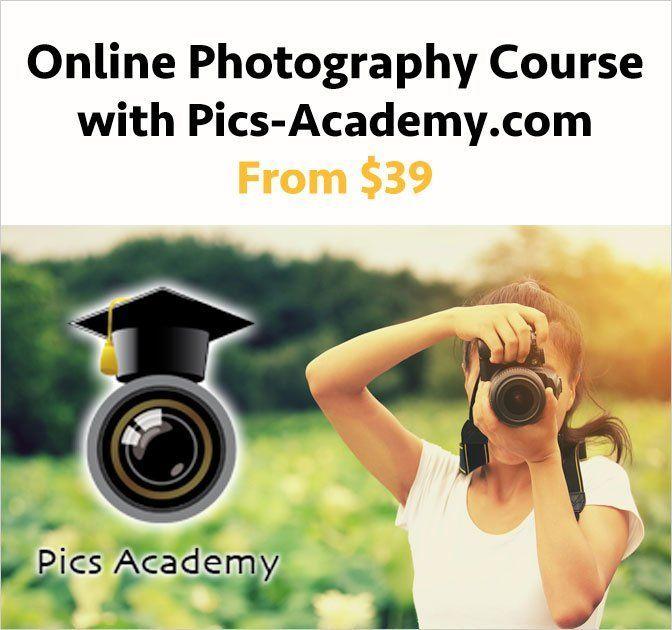 Amateur photography course