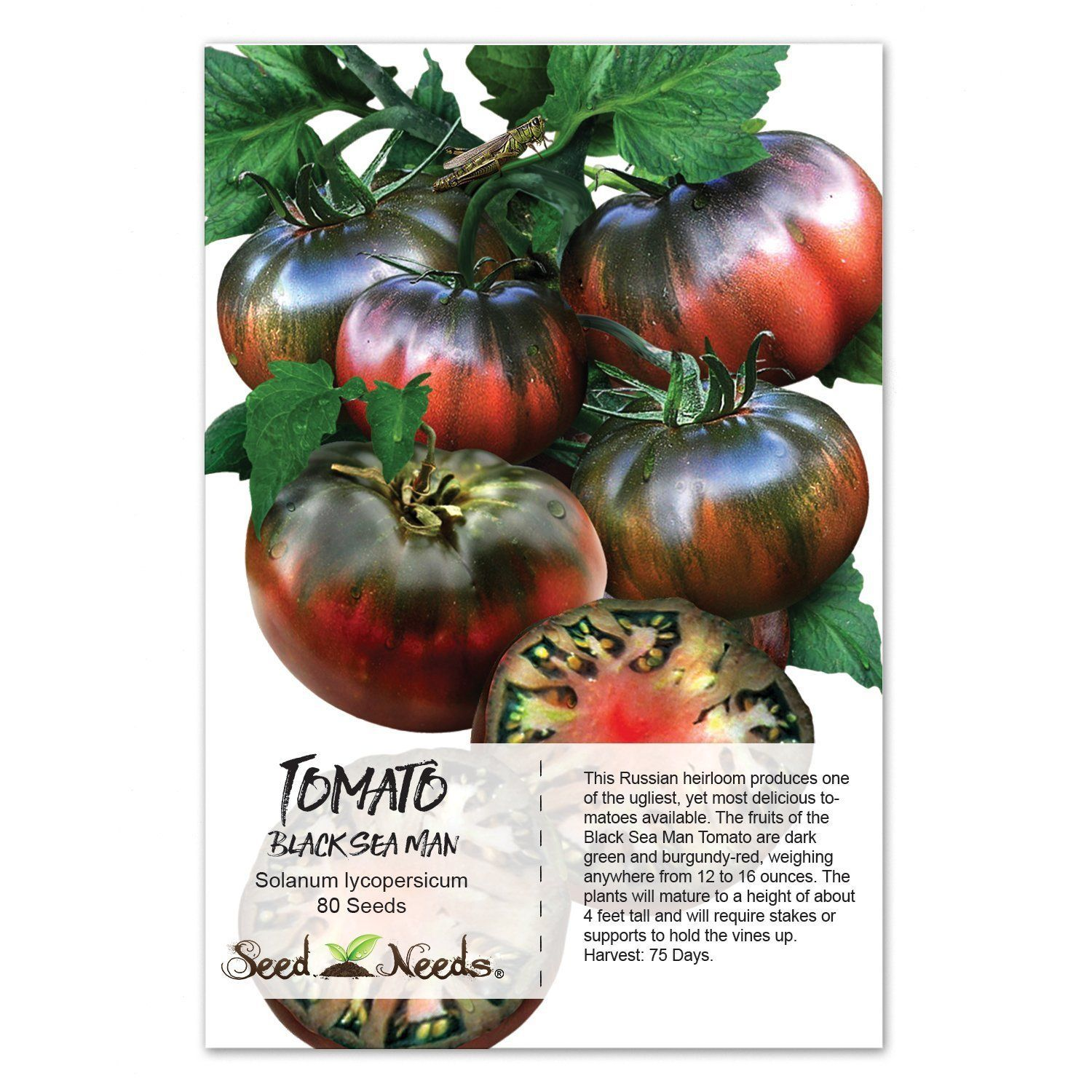 Spice reccomend Days for tomato seed to mature