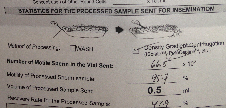 Chipmunk reccomend Iui sperm sample