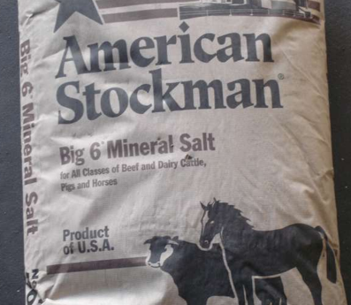 With you steak salt lick apologise, but does