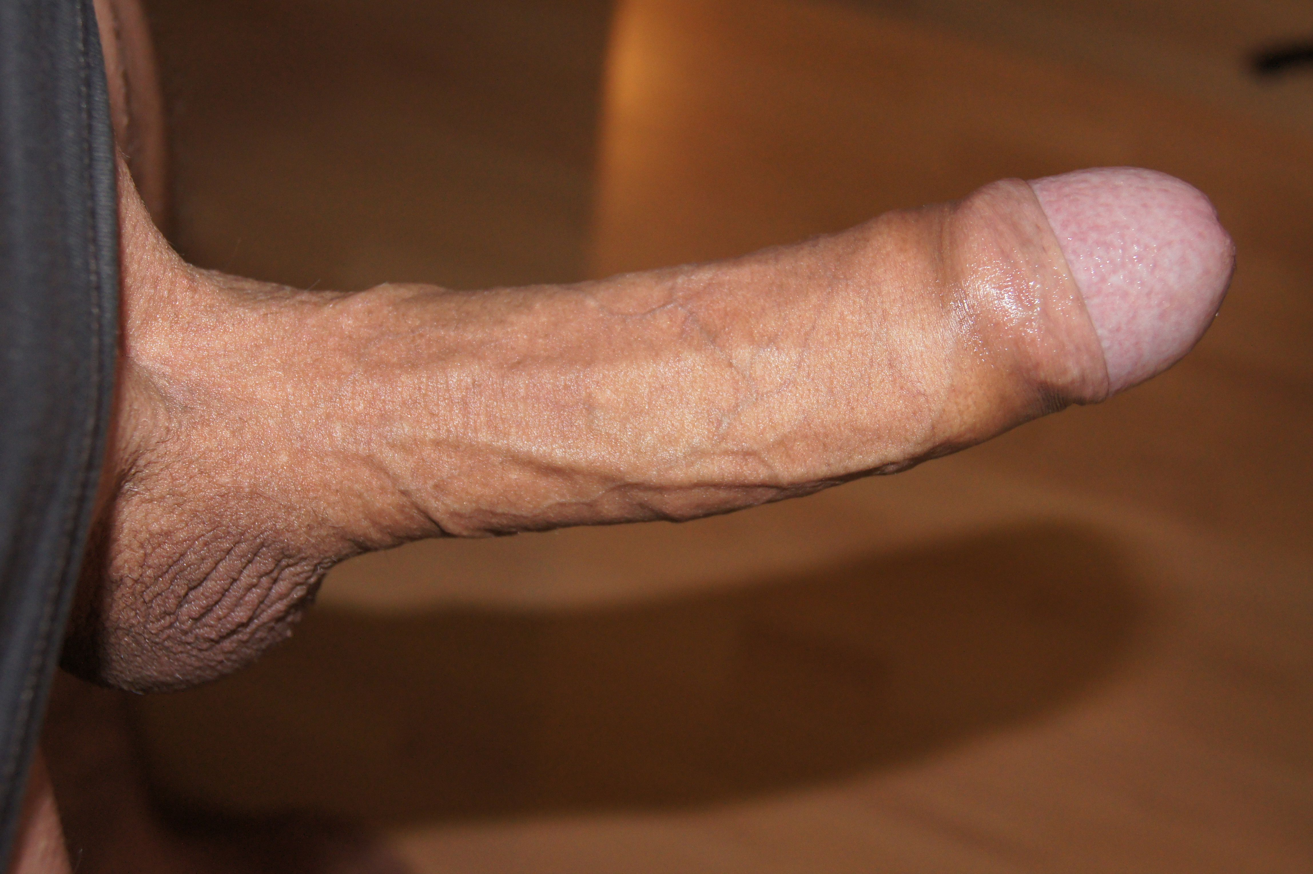 shaved penis pics