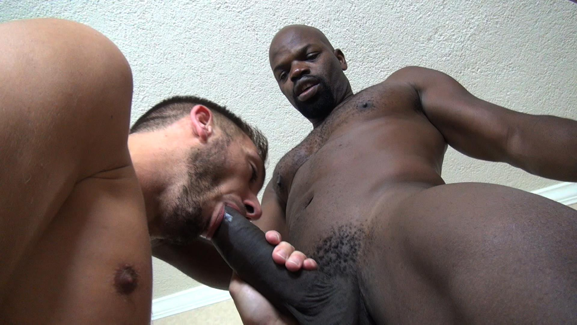 Interracial Gay Cocksucking
