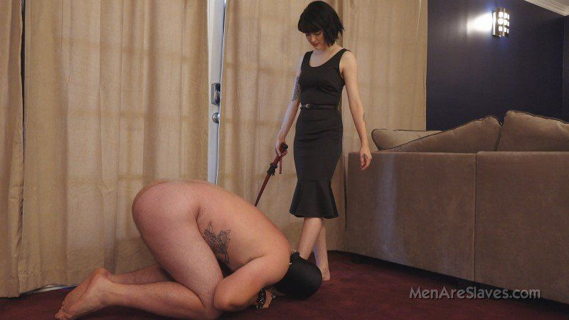 best of Domination Goddess slave